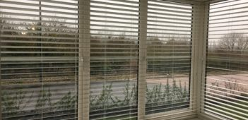 Bay Window venetian blind install.